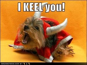 Funny-dog-pictures-i-kill-you