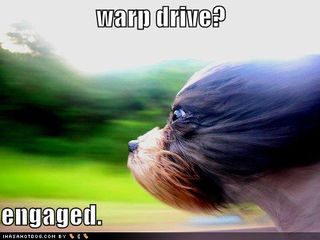 Loldog-warp-drive-engaged