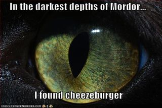 Lolcat eye of mordor