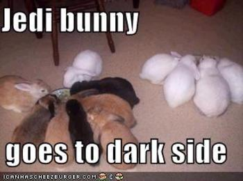 Jedi_bunny_goes_to_dark_side
