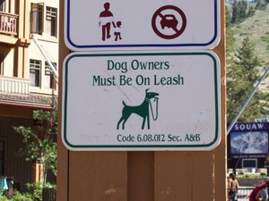 Dog_owners_must_be_on_leash1